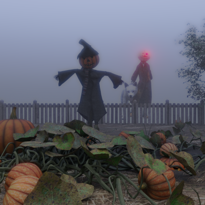 pumpkin-patch5